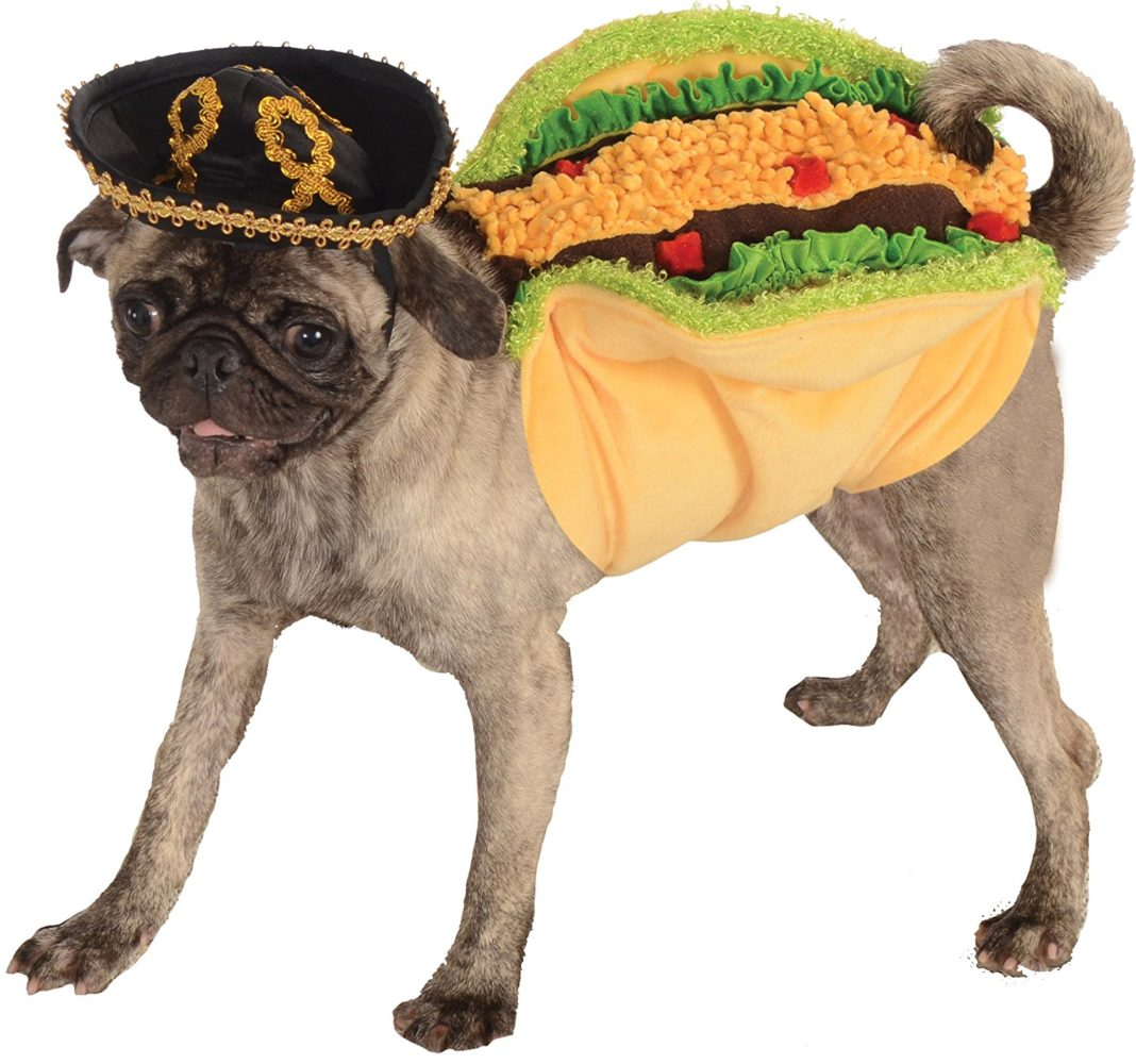 Mexican Dog Costumes