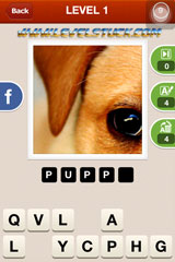 Hi Guess the Pic Answers Level 1 2 3 for iOS