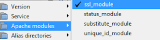 """PHPMailer - Unable to find the socket transport """"ssl"""" on WAMP issue? 